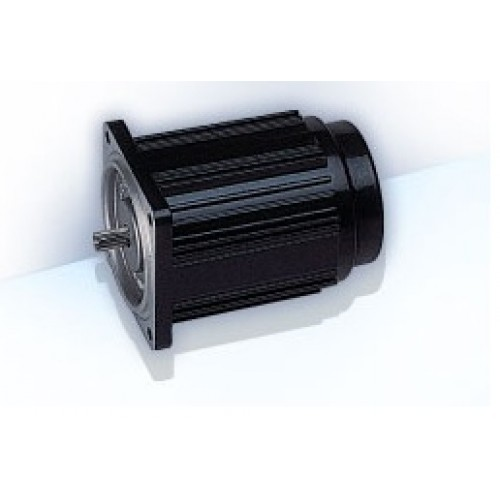 MNI Induction Motor M6IN6G4T